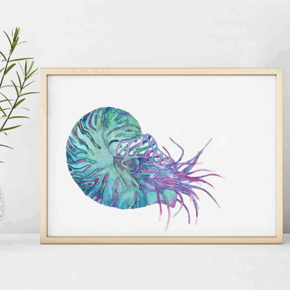 Desenho Ilustração Fauna
