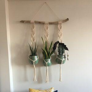 Porta vasos